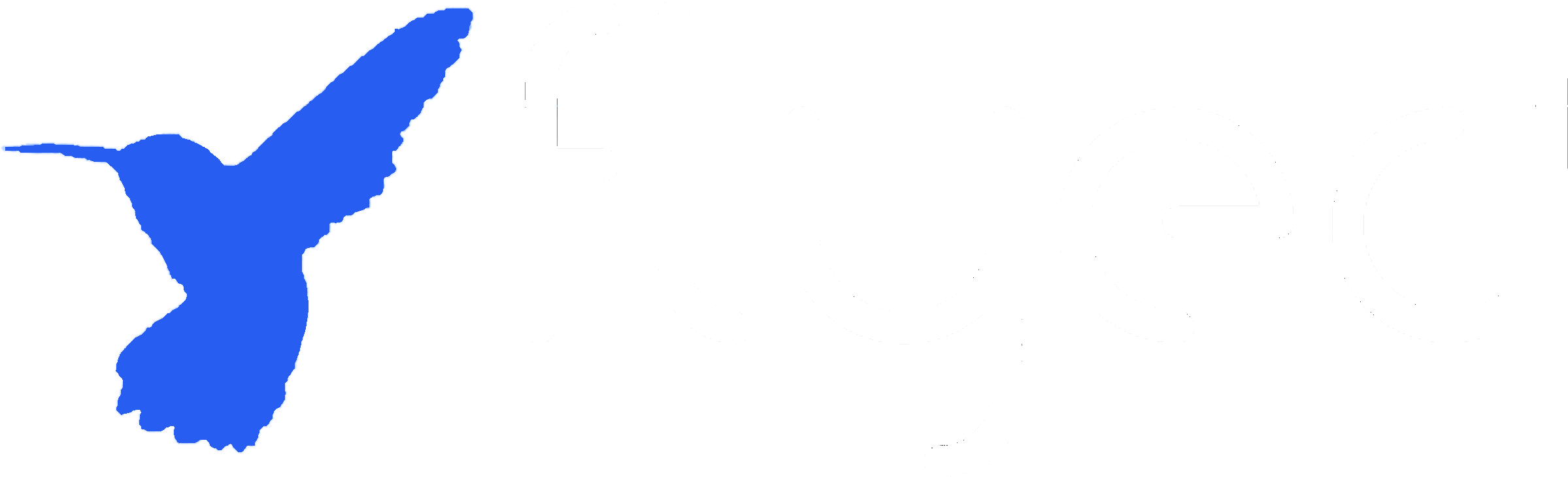 FlyEd Travel Logo